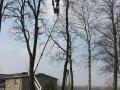 Podest ruchomy ABL 16/18 TK (podnośnik koszowy – zwyżka) wycinka (przycinanie) drzew